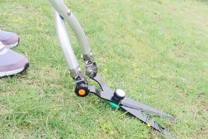 雑草を刈ることでアレルギー症状を防ぐ