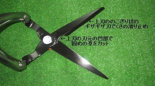http://www.tsubame-kanamonoya.biz/images/material/oubu%2Cgazaha.jpg